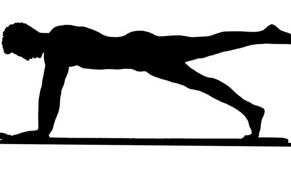 Treinamento em Pilates e Fisioterapia – uma introdução – parte 2