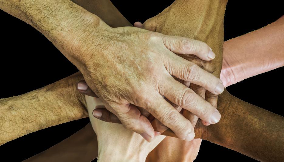 Interdisciplinaridade na área da Saúde: Osteopatia e Pilates